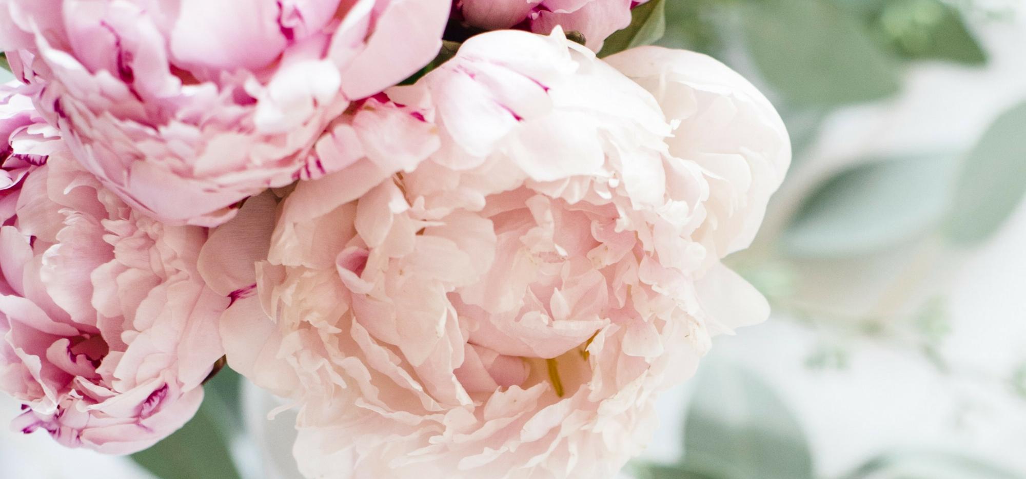 bouquet-de-fleurs-pivoine-rose